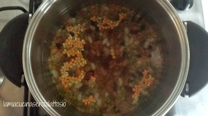 zuppa 1