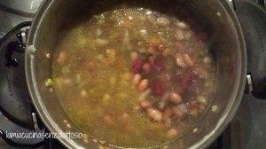 zuppa 5