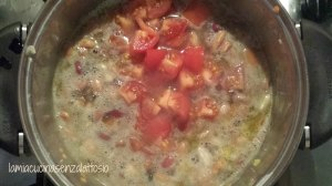 zuppa 6