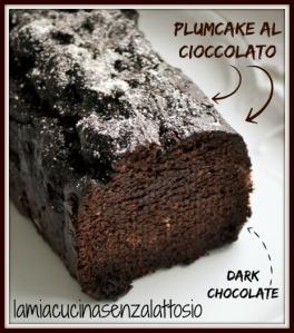 plumcake-cioccolato
