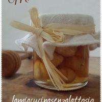 Miele alle nocciole - fatto in casa